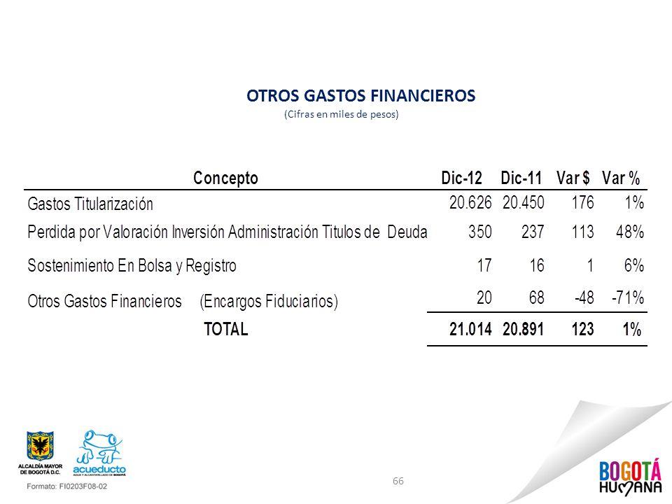 OTROS GASTOS FINANCIEROS (Cifras en miles de pesos)