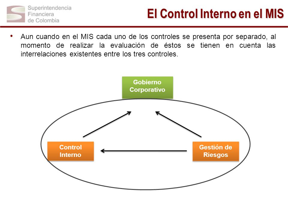 El Control Interno en el MIS