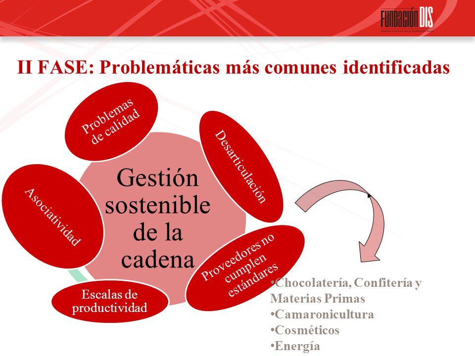 II FASE: Problemáticas más comunes identificadas
