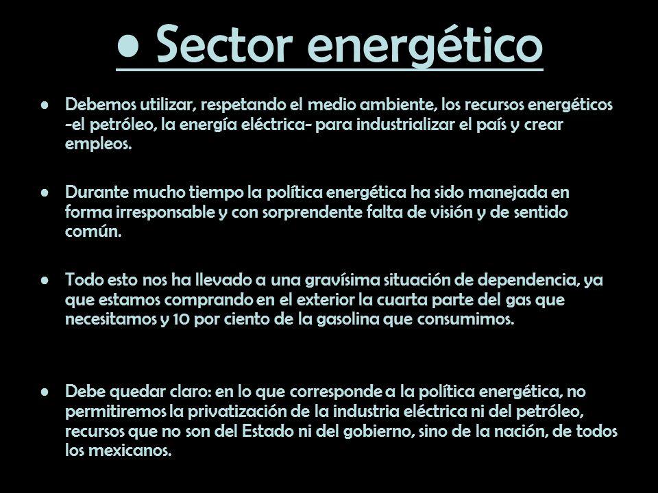 • Sector energético