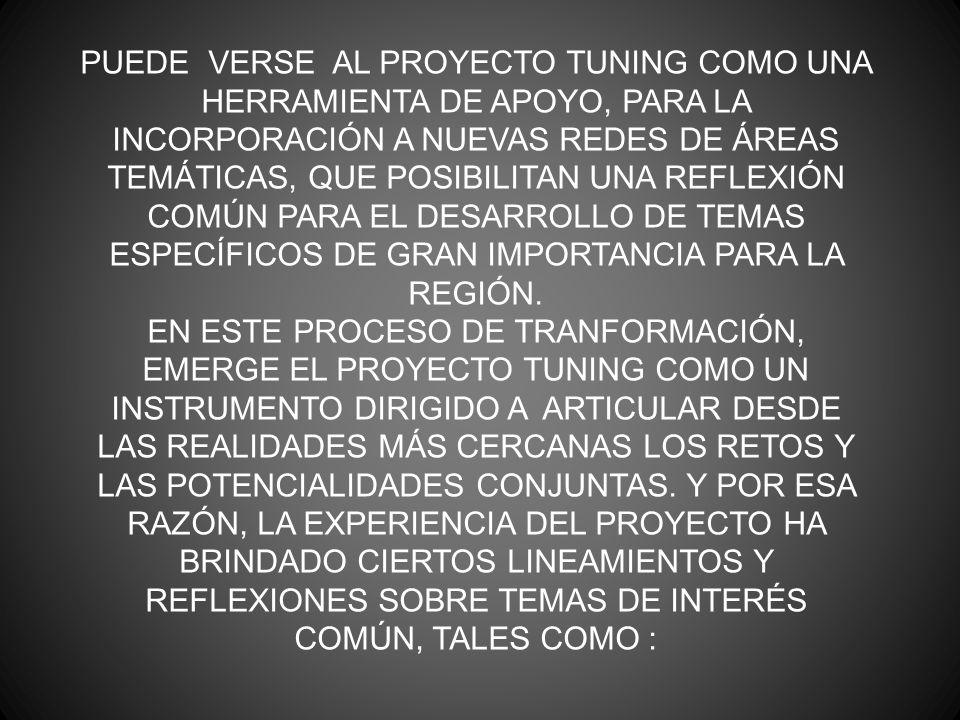 PUEDE VERSE AL PROYECTO TUNING COMO UNA HERRAMIENTA DE APOYO, PARA LA INCORPORACIÓN A NUEVAS REDES DE ÁREAS TEMÁTICAS, QUE POSIBILITAN UNA REFLEXIÓN COMÚN PARA EL DESARROLLO DE TEMAS ESPECÍFICOS DE GRAN IMPORTANCIA PARA LA REGIÓN.