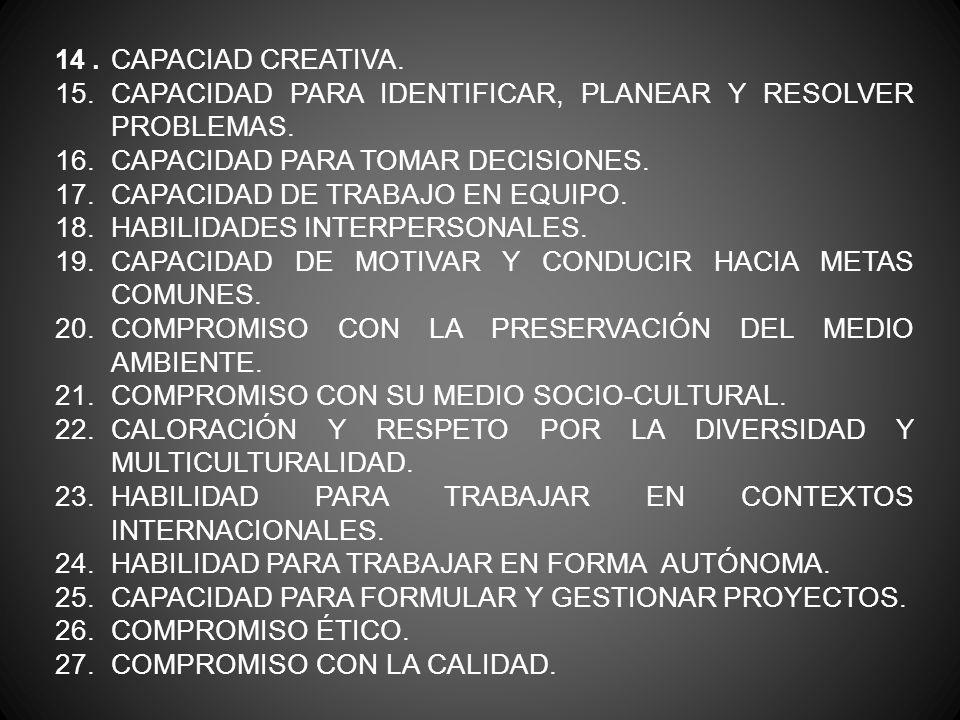 15. CAPACIDAD PARA IDENTIFICAR, PLANEAR Y RESOLVER PROBLEMAS.