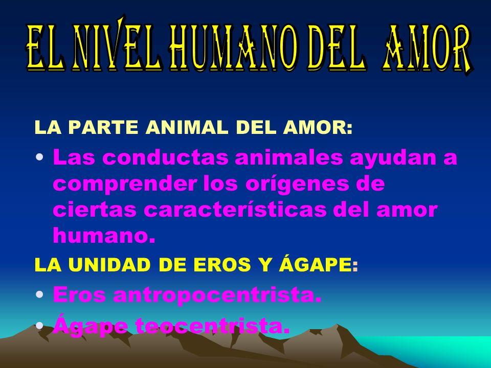 EL NIVEL HUMANO DEL AMOR