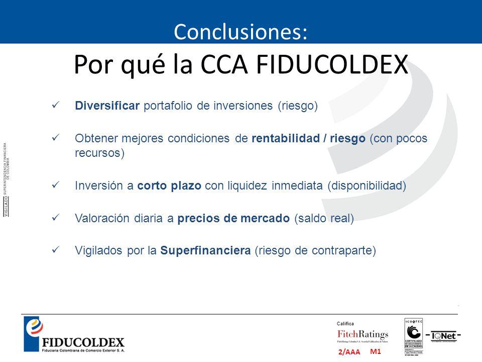 Conclusiones: Por qué la CCA FIDUCOLDEX