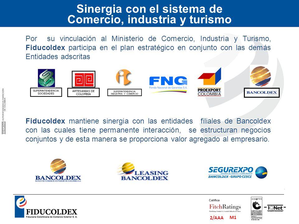 Sinergia con el sistema de Comercio, industria y turismo