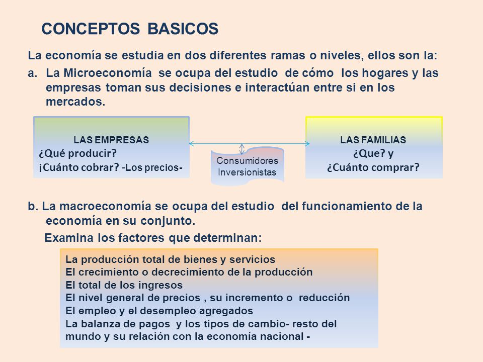 CONCEPTOS BASICOS La economía se estudia en dos diferentes ramas o niveles, ellos son la: