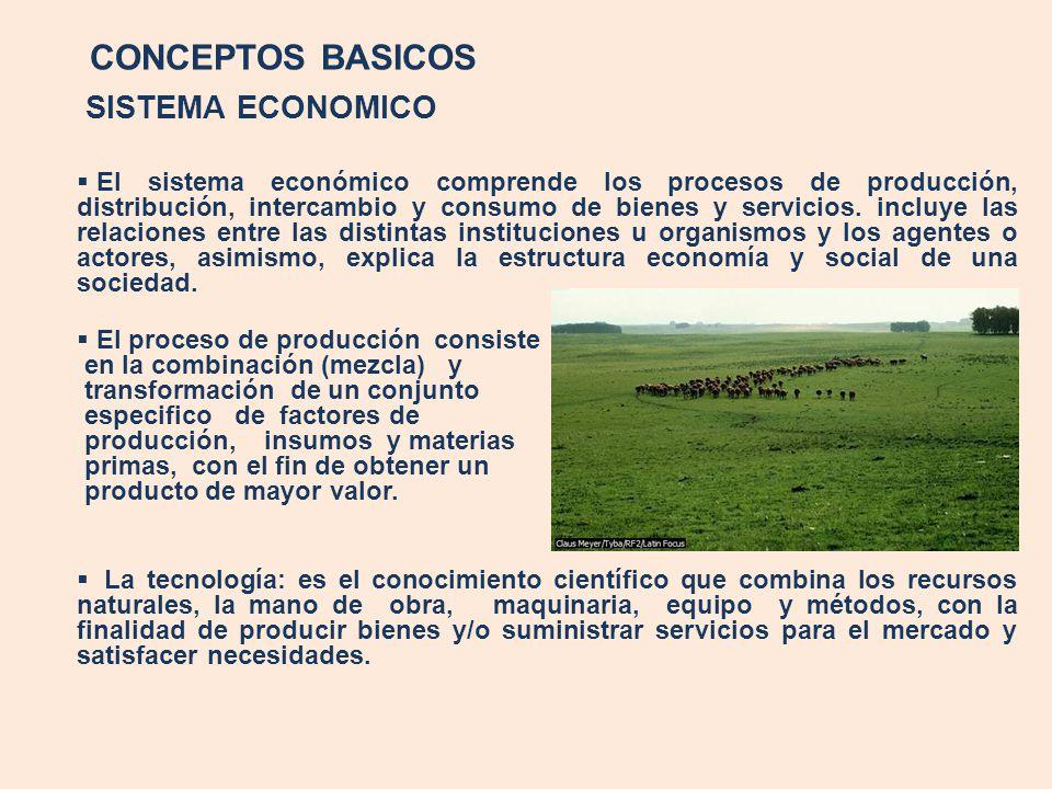 CONCEPTOS BASICOS SISTEMA ECONOMICO