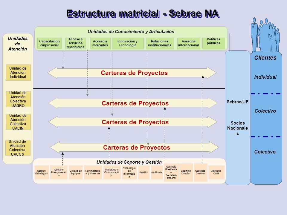 Estructura matricial - Sebrae NA