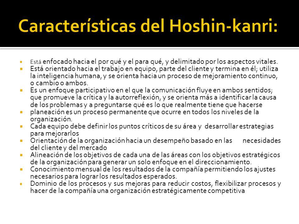 Características del Hoshin-kanri: