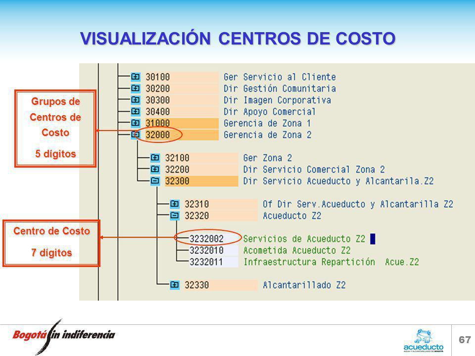 VISUALIZACIÓN CENTROS DE COSTO