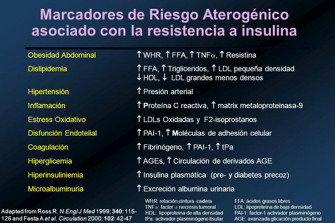Marcadores de Riesgo Aterogénico asociado con la resistencia a insulina