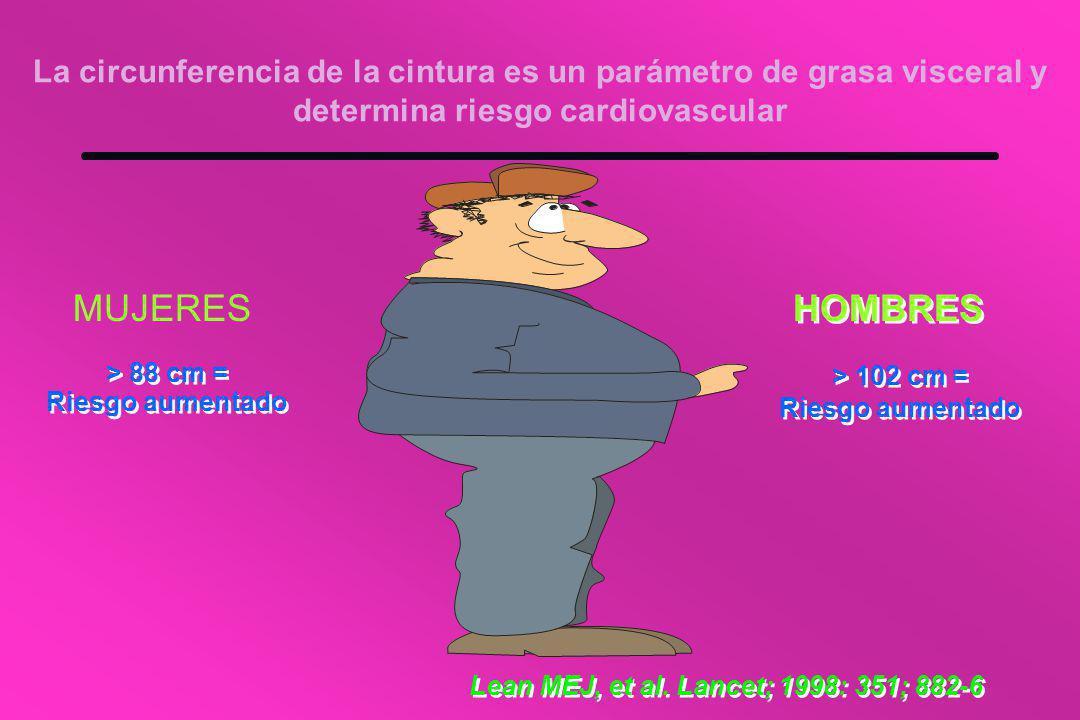 La circunferencia de la cintura es un parámetro de grasa visceral y determina riesgo cardiovascular