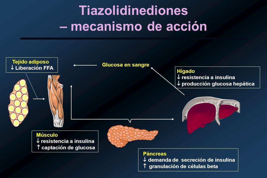 Tiazolidinediones – mecanismo de acción