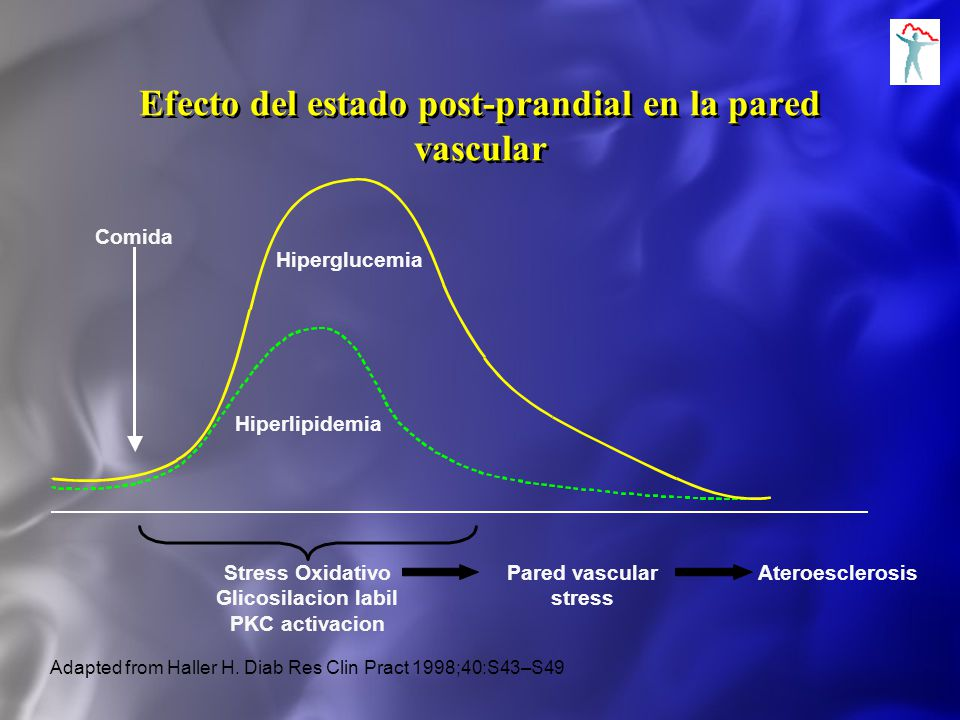Efecto del estado post-prandial en la pared vascular