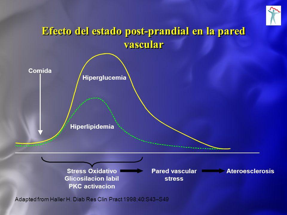 Efecto del estado post-prandial en la pared vascular