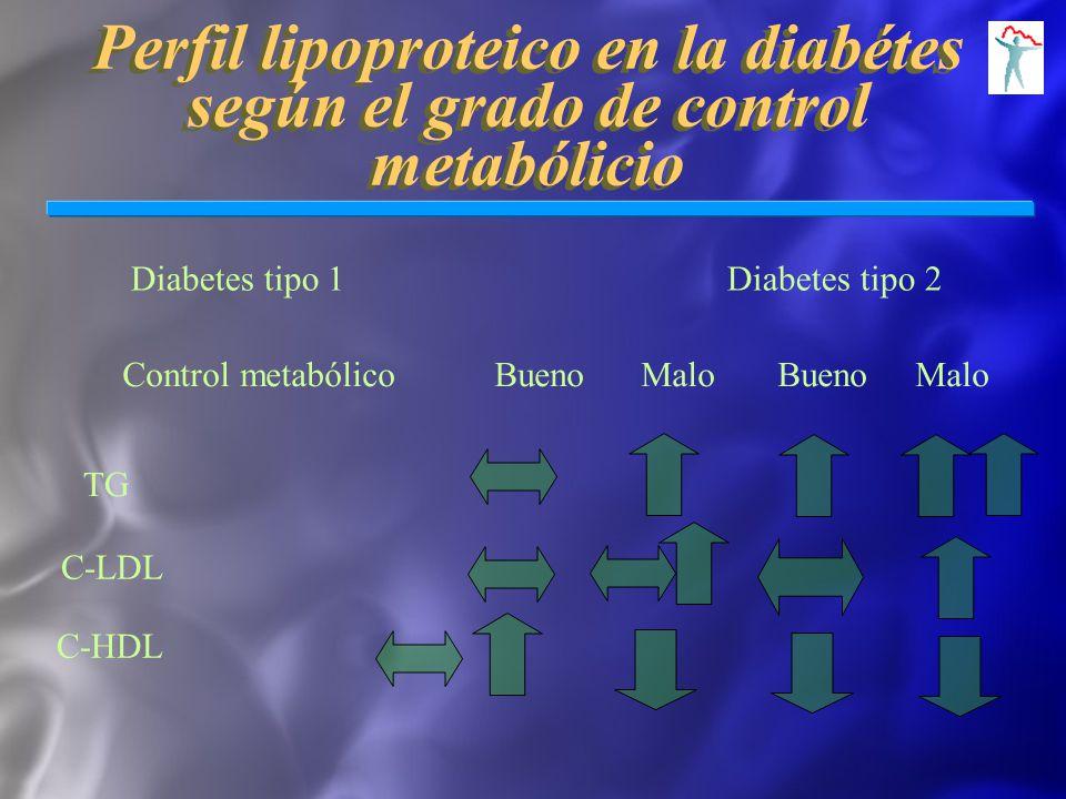 Perfil lipoproteico en la diabétes según el grado de control metabólicio