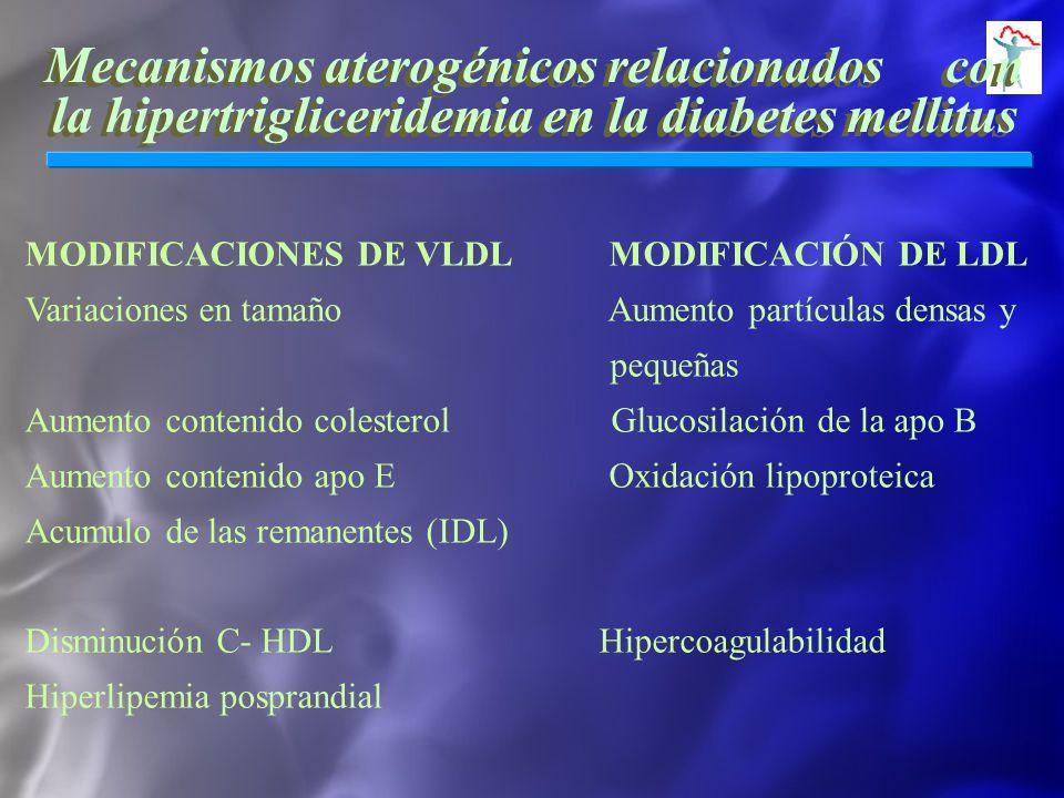 Mecanismos aterogénicos relacionados con la hipertrigliceridemia en la diabetes mellitus