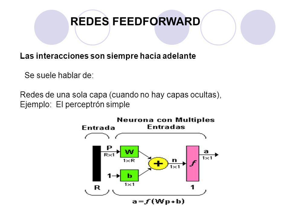 REDES FEEDFORWARD Las interacciones son siempre hacia adelante