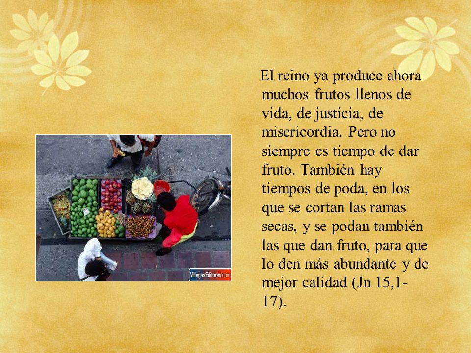 El reino ya produce ahora muchos frutos llenos de vida, de justicia, de misericordia.