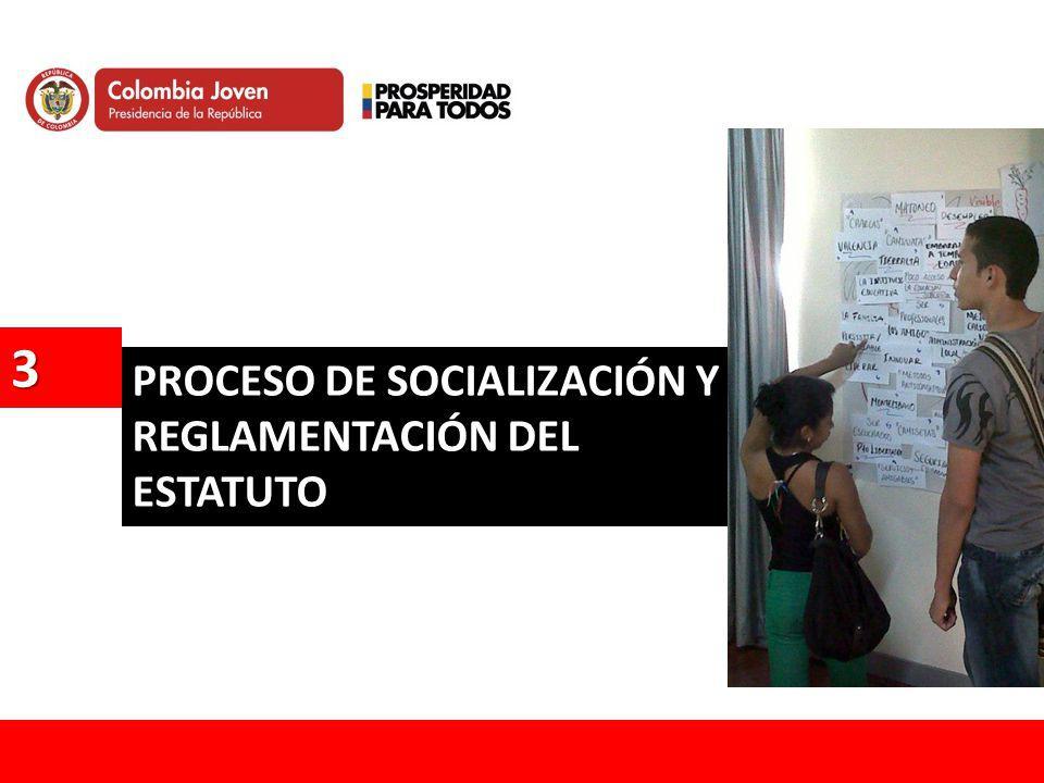 3 PROCESO DE SOCIALIZACIÓN Y REGLAMENTACIÓN DEL ESTATUTO