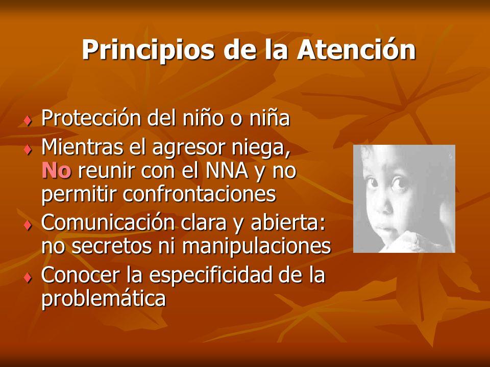 Principios de la Atención