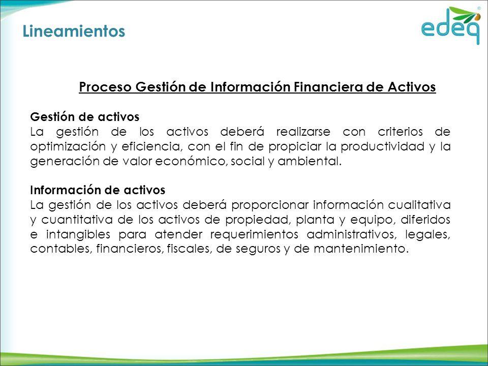 Lineamientos Proceso Gestión de Información Financiera de Activos