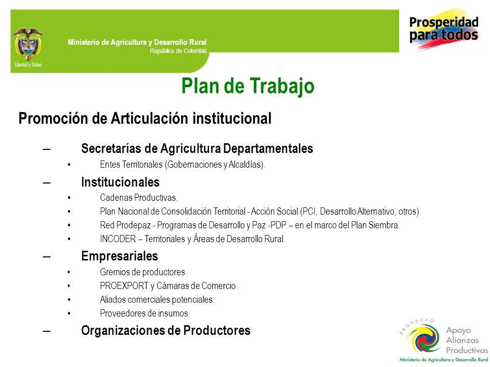 Plan de Trabajo Promoción de Articulación institucional