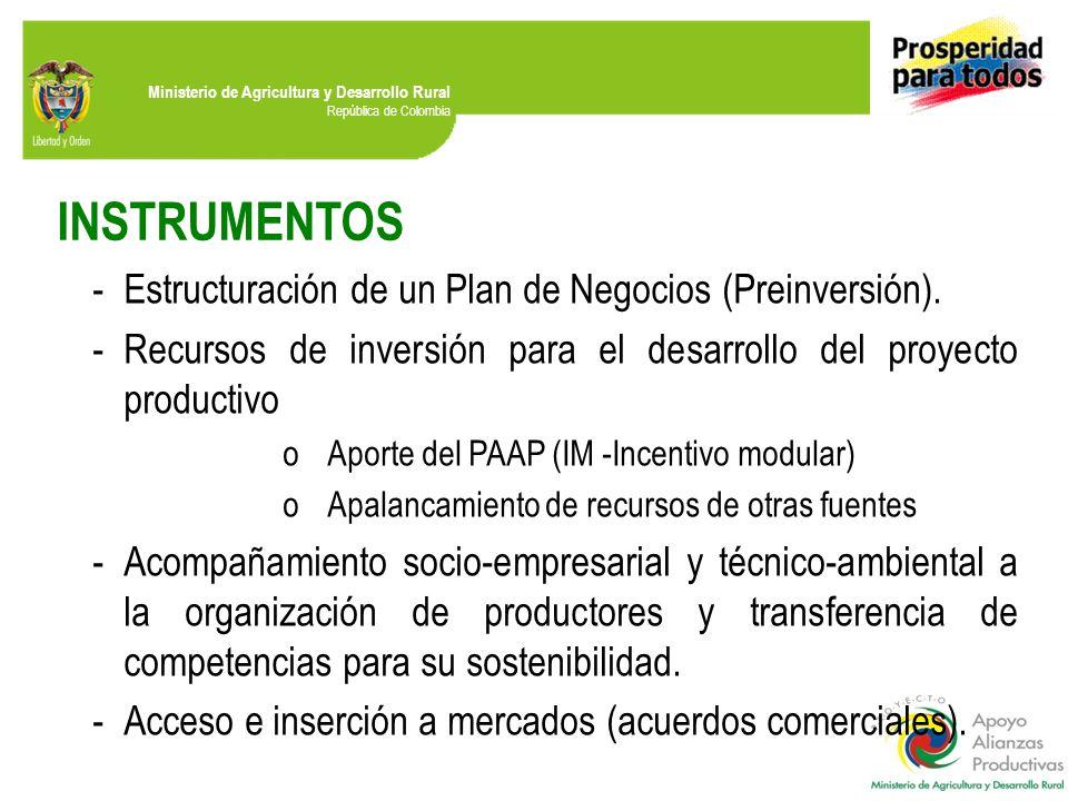 INSTRUMENTOS Estructuración de un Plan de Negocios (Preinversión).