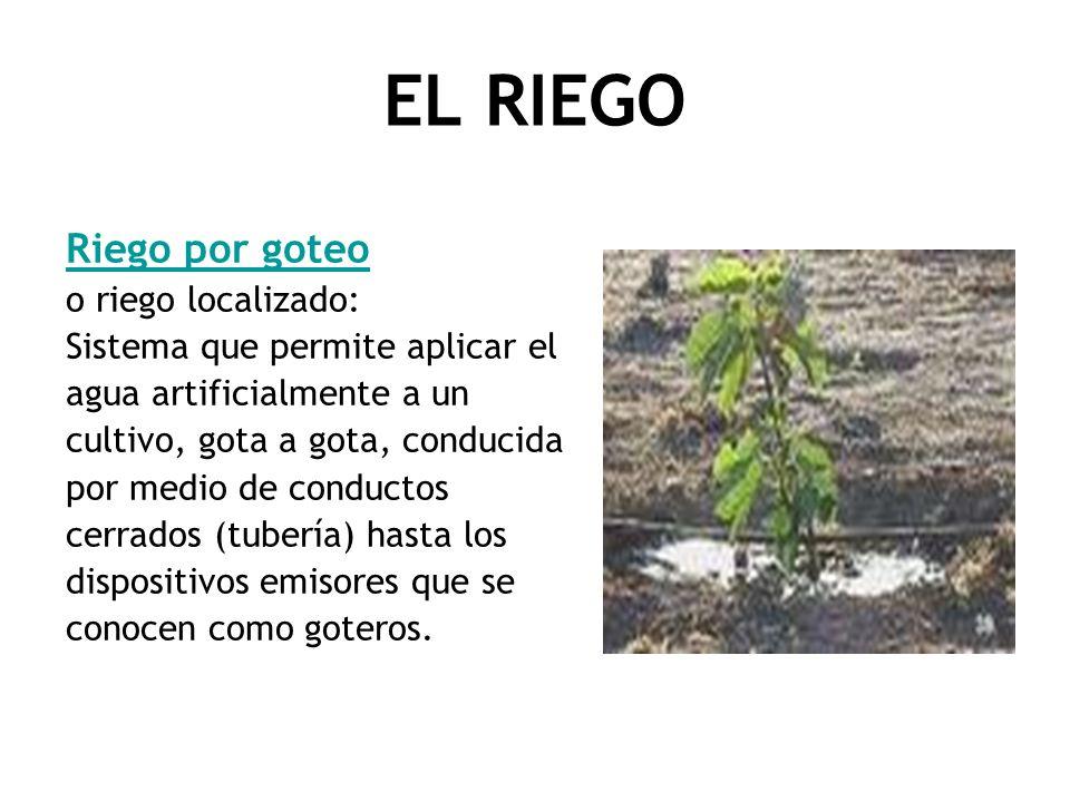 EL RIEGO Riego por goteo o riego localizado: