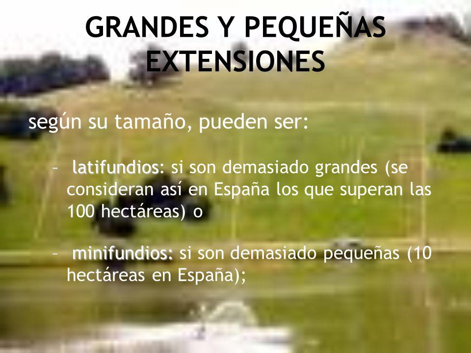GRANDES Y PEQUEÑAS EXTENSIONES