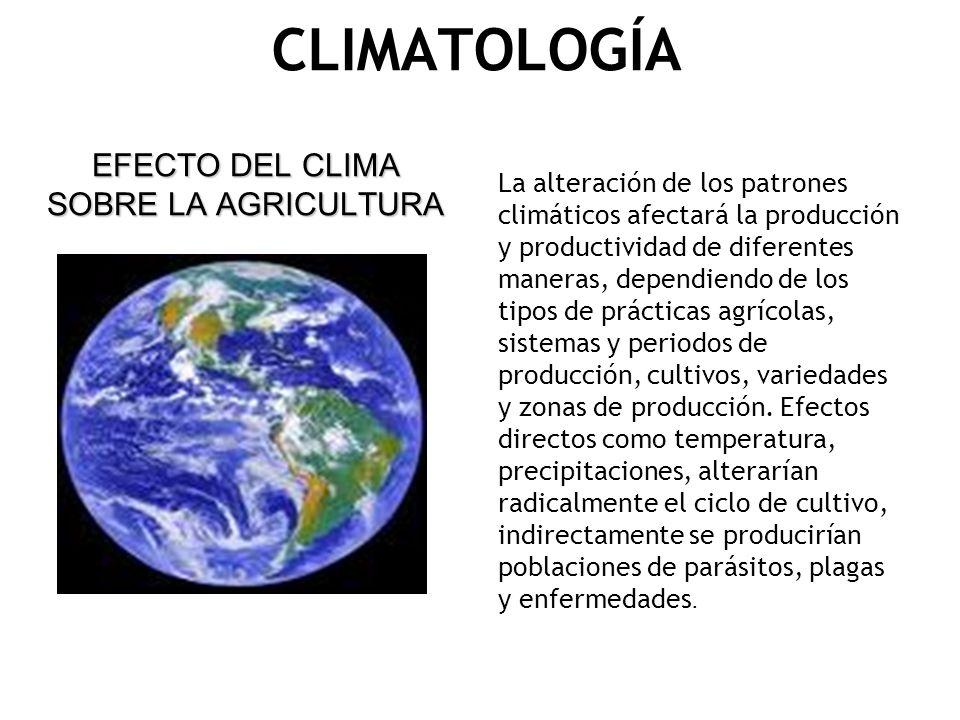 CLIMATOLOGÍA EFECTO DEL CLIMA SOBRE LA AGRICULTURA