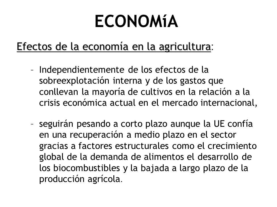 ECONOMíA Efectos de la economía en la agricultura:
