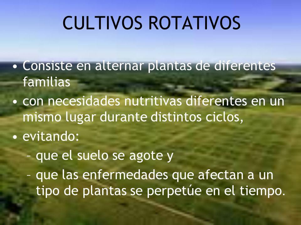 CULTIVOS ROTATIVOS Consiste en alternar plantas de diferentes familias