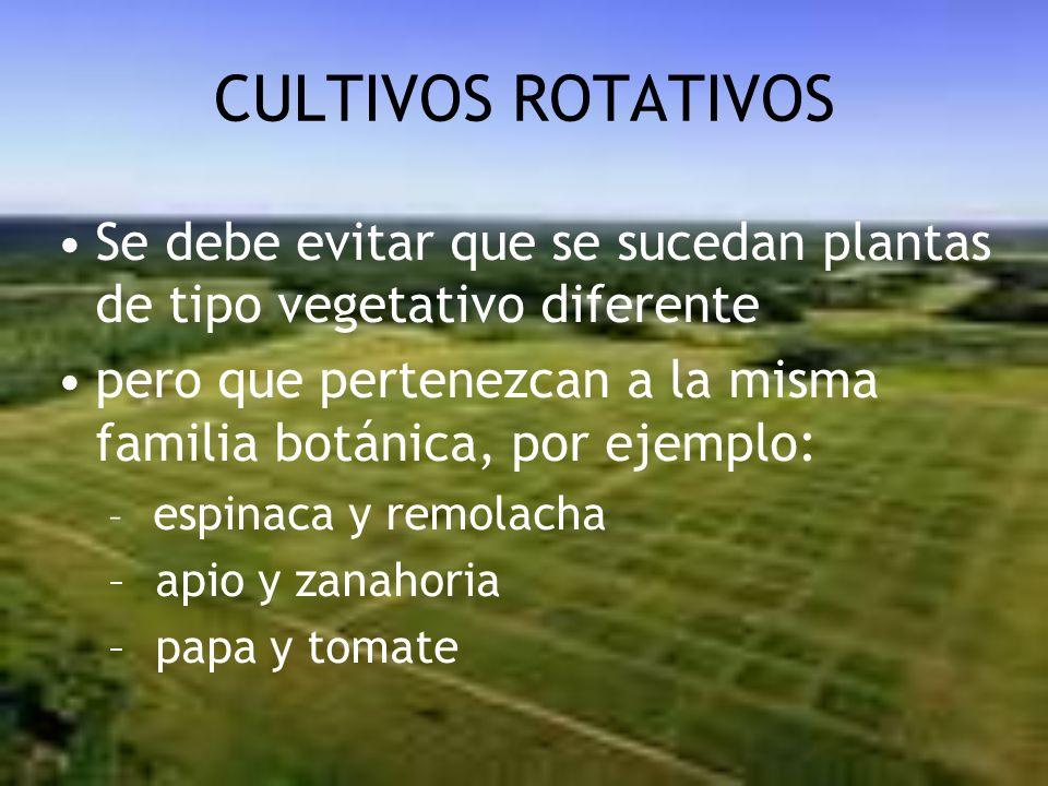 CULTIVOS ROTATIVOS Se debe evitar que se sucedan plantas de tipo vegetativo diferente.