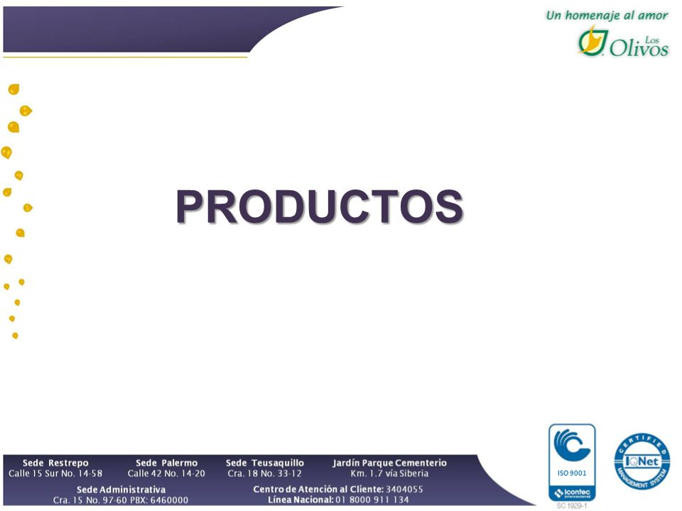 PRODUCTOS ISO 9001