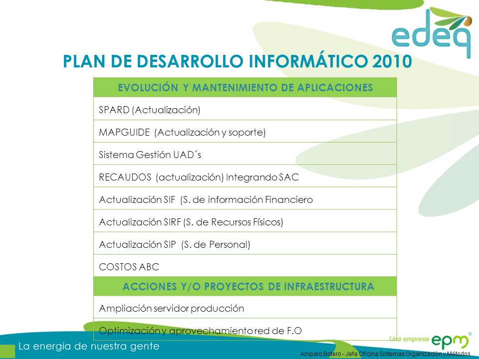 PLAN DE DESARROLLO INFORMÁTICO 2010