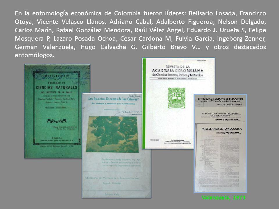 MISCELANEA ENTOMOLÓGICA ESPECIES COLOMBIANAS DEL GENERO CALOSOMA WEBER