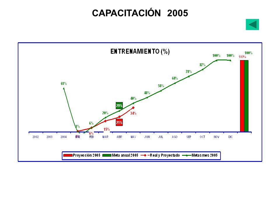 CAPACITACIÓN 2005