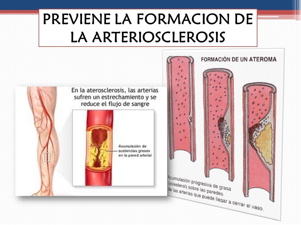 PREVIENE LA FORMACION DE LA ARTERIOSCLEROSIS