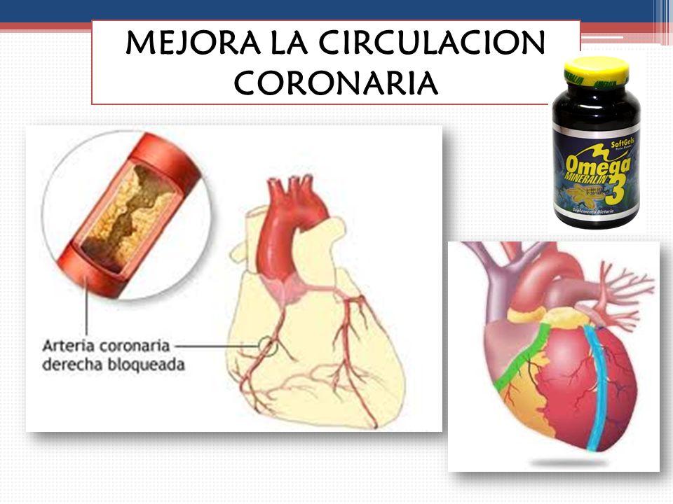 MEJORA LA CIRCULACION CORONARIA