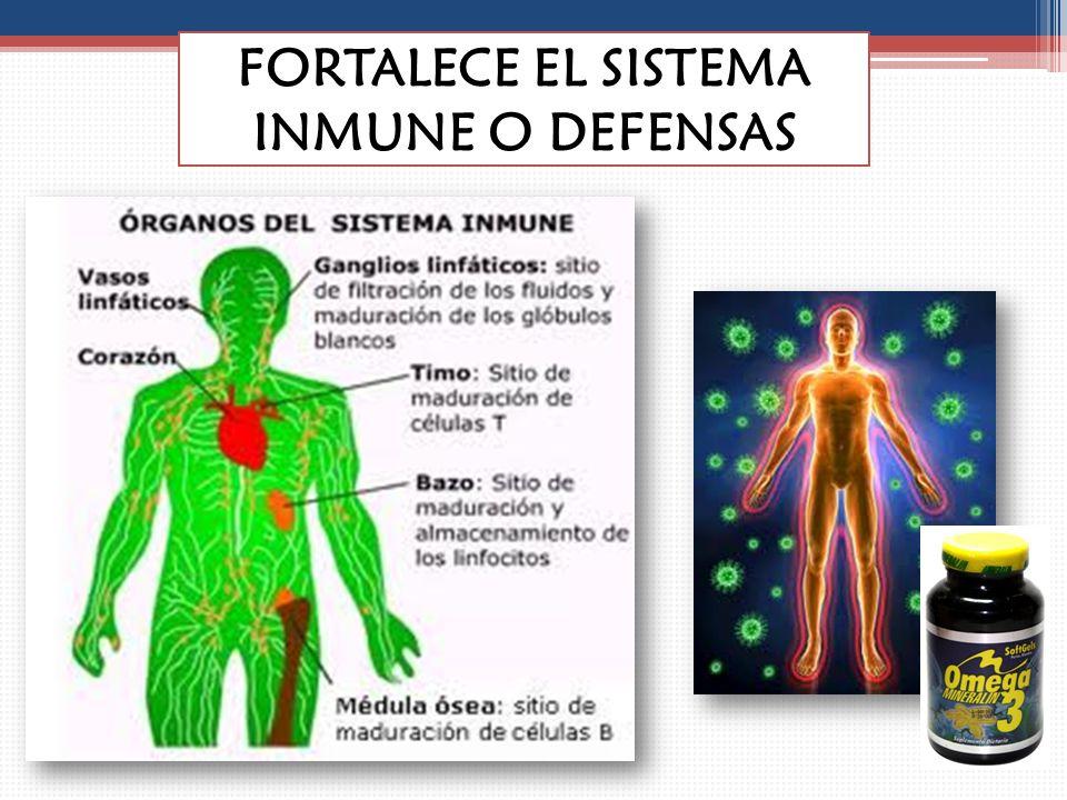 FORTALECE EL SISTEMA INMUNE O DEFENSAS