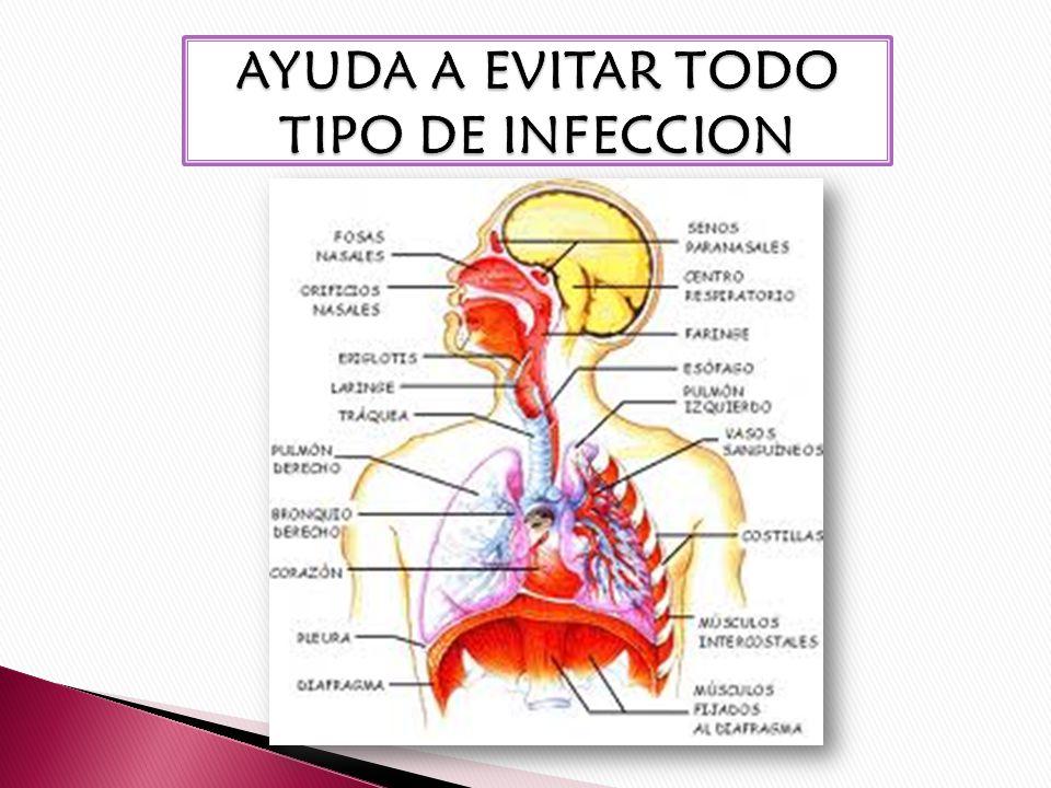 AYUDA A EVITAR TODO TIPO DE INFECCION