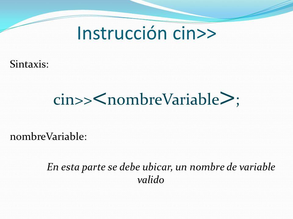 Instrucción cin>>