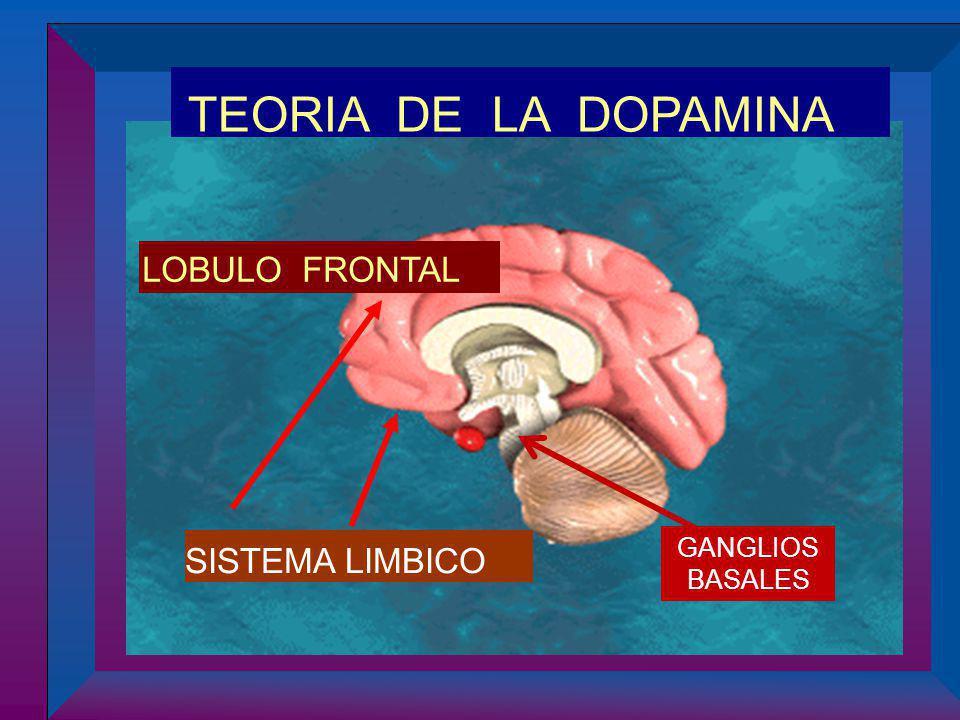 TEORIA DE LA DOPAMINA LOBULO FRONTAL GANGLIOS BASALES SISTEMA LIMBICO