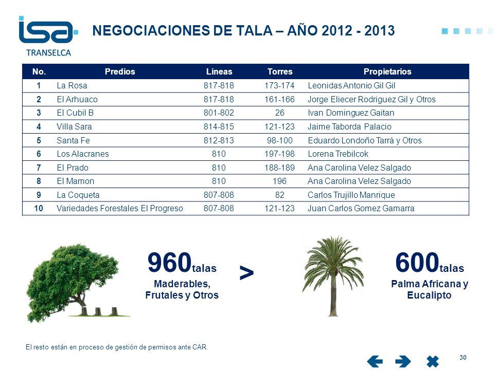 NEGOCIACIONES DE TALA – AÑO 2012 - 2013