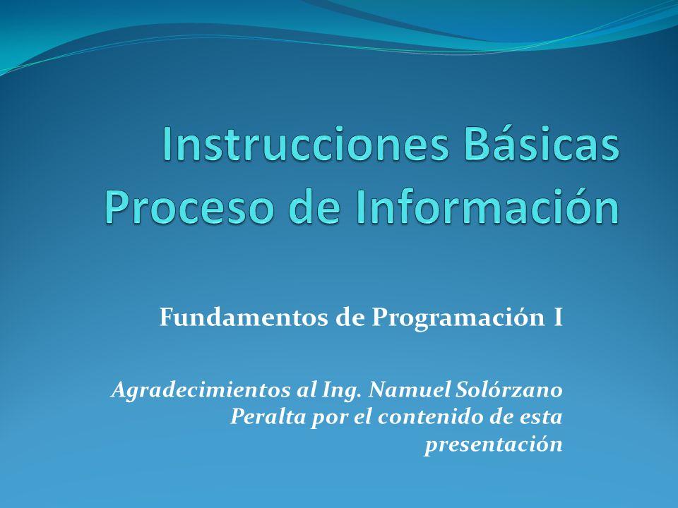 Instrucciones Básicas Proceso de Información