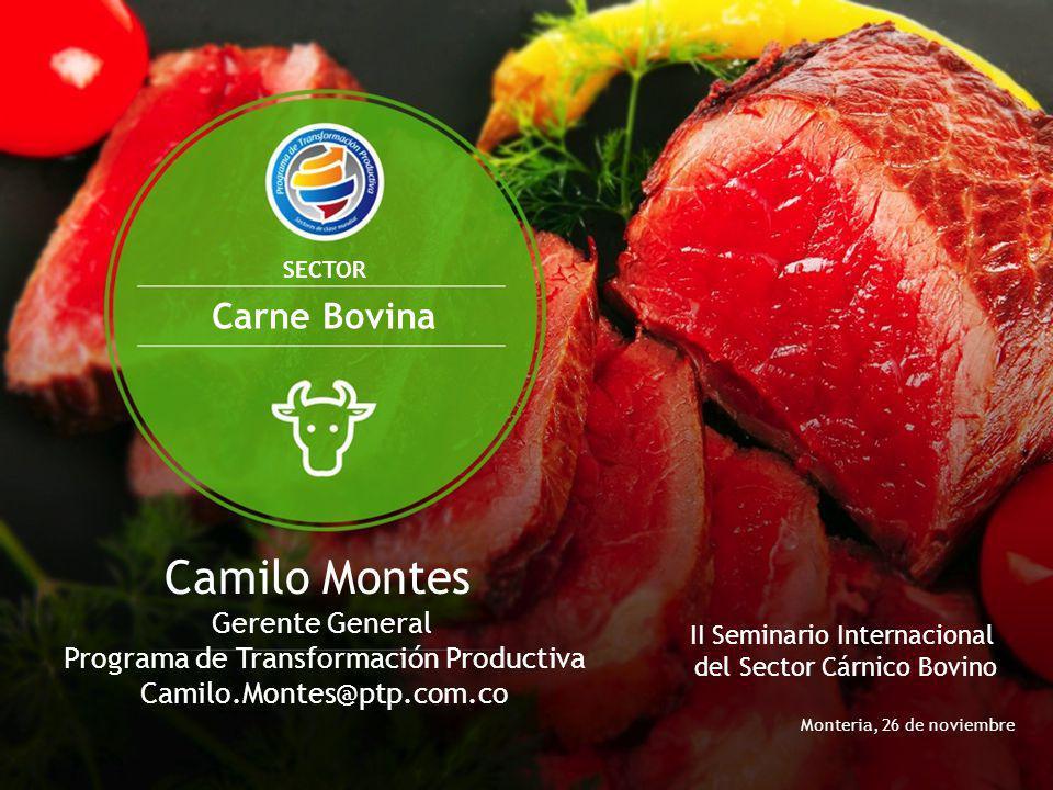 Camilo Montes Carne Bovina
