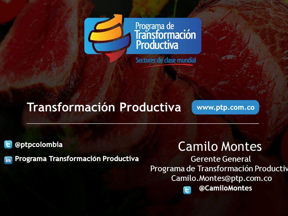 Gerente General Programa de Transformación Productiva