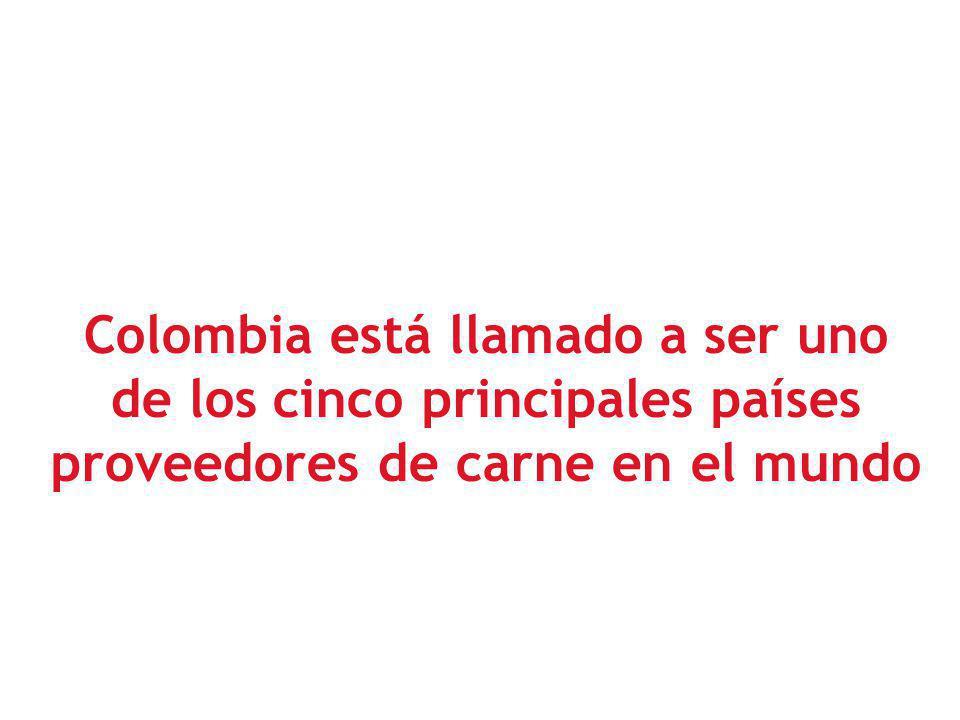 Colombia está llamado a ser uno de los cinco principales países proveedores de carne en el mundo