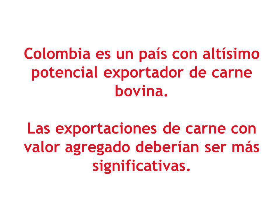 Colombia es un país con altísimo potencial exportador de carne bovina.
